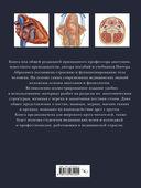 Анатомия человека. Тело. Как это работает — фото, картинка — 8
