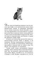 Чарли. Котенок, который спас жизнь — фото, картинка — 5