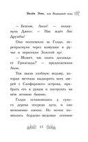 Белёк Эми, или Подводный клад — фото, картинка — 13