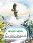 Сказки лесной опушки — фото, картинка — 5