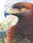 Сказки лесной опушки — фото, картинка — 9