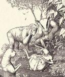 Плутовские сказки про животных — фото, картинка — 9