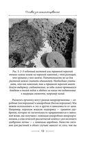Секреты доброй почвы для чудо-урожая — фото, картинка — 13