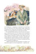 Аня из Зелёных Мезонинов — фото, картинка — 13