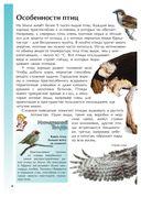 Птицы — фото, картинка — 4