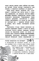 Воробьишко — фото, картинка — 14