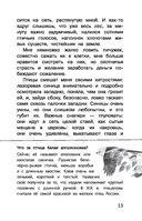 Воробьишко — фото, картинка — 15