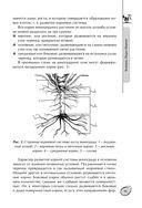 Большая энциклопедия виноградаря — фото, картинка — 11
