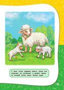 Годовой курс занятий. Для детей 1-2 лет — фото, картинка — 15