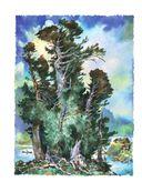 Сказы. Медной горы хозяйка — фото, картинка — 4