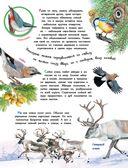 О животных и растениях — фото, картинка — 4