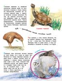 О животных и растениях — фото, картинка — 8