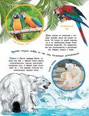 О животных и растениях — фото, картинка — 9