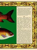 Русская рыбалка — фото, картинка — 7