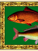 Русская рыбалка — фото, картинка — 6