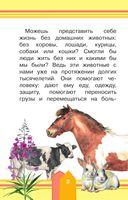 Домашние животные — фото, картинка — 2