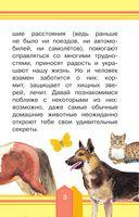 Домашние животные — фото, картинка — 3