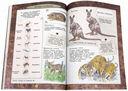 Животные. Занимательная зоология — фото, картинка — 3