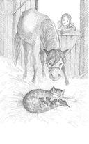 Котёнок Пушинка, или Рождественское чудо — фото, картинка — 7