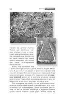 Огород. Как я выращиваю здоровые овощи — фото, картинка — 13