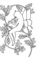 Лесные феи. Мини-раскраска-антистресс для творчества и вдохновения — фото, картинка — 7