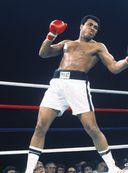 Мохаммед Али. Неизданное — фото, картинка — 4