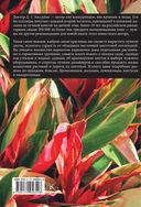 Все о комнатных растениях. Сорта. Уход. Дизайн — фото, картинка — 9