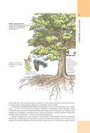 Работы по дереву — фото, картинка — 9