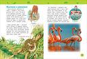 Удивительные животные. Энциклопедия для детского сада — фото, картинка — 1