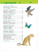 Удивительные животные. Энциклопедия для детского сада — фото, картинка — 3