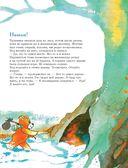 301 история о лесных медведях — фото, картинка — 11