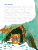 301 история о лесных медведях — фото, картинка — 12
