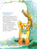 301 история о лесных медведях — фото, картинка — 3