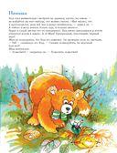 301 история о лесных медведях — фото, картинка — 5
