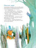 301 история о лесных медведях — фото, картинка — 8