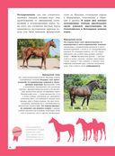 Лошади. Полная энциклопедия — фото, картинка — 12