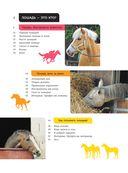 Лошади. Полная энциклопедия — фото, картинка — 4