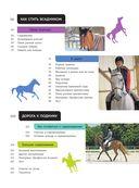 Лошади. Полная энциклопедия — фото, картинка — 5
