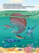 Весь подводный мир — фото, картинка — 5