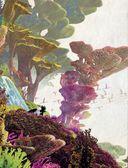 Как приручить дракона 3. Энциклопедия Скрытого Мира — фото, картинка — 2