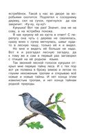 Лесной голосок — фото, картинка — 7