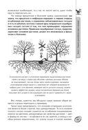 Большая книга сада и огорода по-новому — фото, картинка — 13
