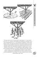 Большая книга сада и огорода по-новому — фото, картинка — 15