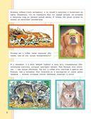 Как живут животные? — фото, картинка — 6