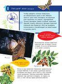 Большая энциклопедия юного натуралиста — фото, картинка — 10