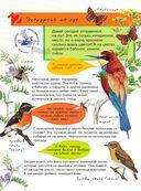 Большая энциклопедия юного натуралиста — фото, картинка — 12