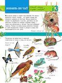 Большая энциклопедия юного натуралиста — фото, картинка — 13