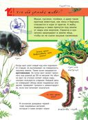 Большая энциклопедия юного натуралиста — фото, картинка — 14