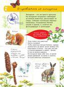 Большая энциклопедия юного натуралиста — фото, картинка — 6