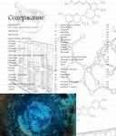 Химические элементы — фото, картинка — 4